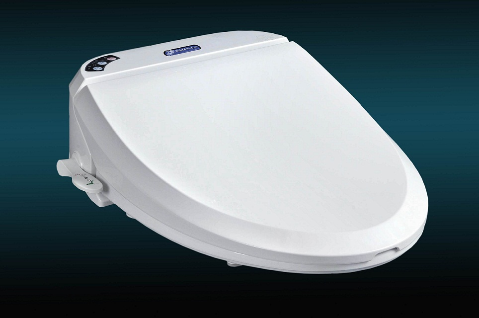 Swell E 100A Electronic Bidet Seat With Dryer And Deodorizer Creativecarmelina Interior Chair Design Creativecarmelinacom